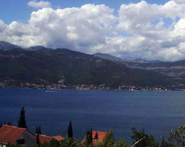 Red fenix недвижимость в черногории